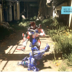 nice_try_assassination_halo5_picture
